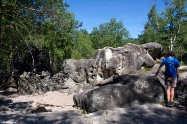 Circuit des 25 bosses, forêt de Fontainebleau, France